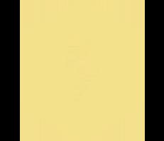 ElevateSponsorx200